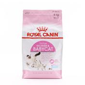로얄캐닌 마더&베이비캣 4kg + 로얄캐닌 파우치