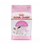 로얄캐닌 마더&베이비캣 4kg + 로얄캐닌 파우치 사진