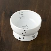네코이찌 워터볼 고양이무늬