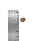 로얄캐닌 오랄 케어 3.5kg + 로얄캐닌 파우치 사진