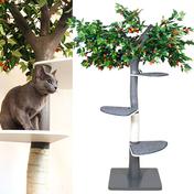 펫모닝 숲속의 고양이 체리 캣트리 PMC-515