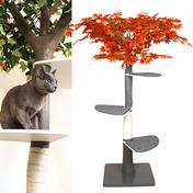 펫모닝 숲속의 고양이 단풍 캣트리 PMC-516