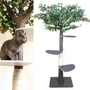 펫모닝 숲속의 고양이 벤자민 캣트리 PMC-517