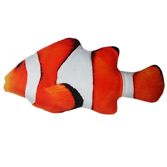 쿠치올로 캣닢 물고기 니모 사진