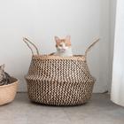 고양이도넛 제넷바구니 사진