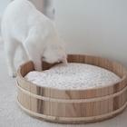 고양이도넛 방석 보타닉가든래빗L 사진