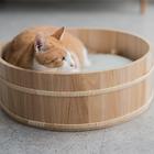 고양이도넛 오동오동냥 S 사진