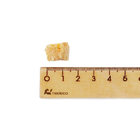 한줌의간식 92% REAL동결건조 치킨 호박 25g 사진
